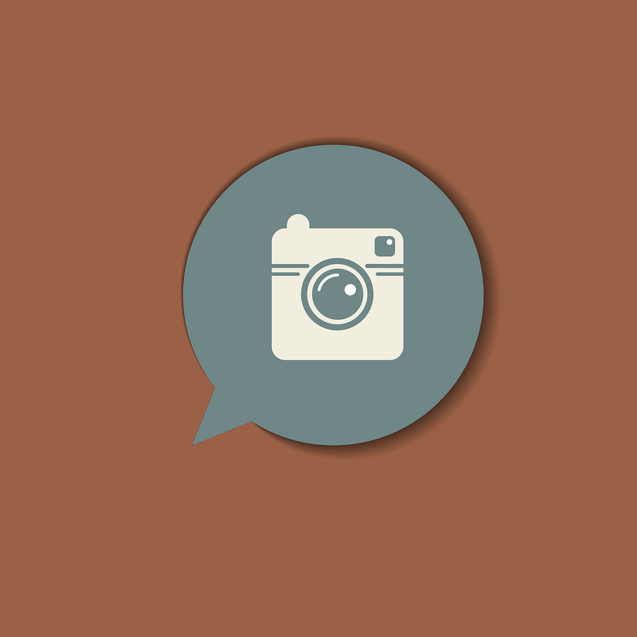 Hipster photo camera icon.